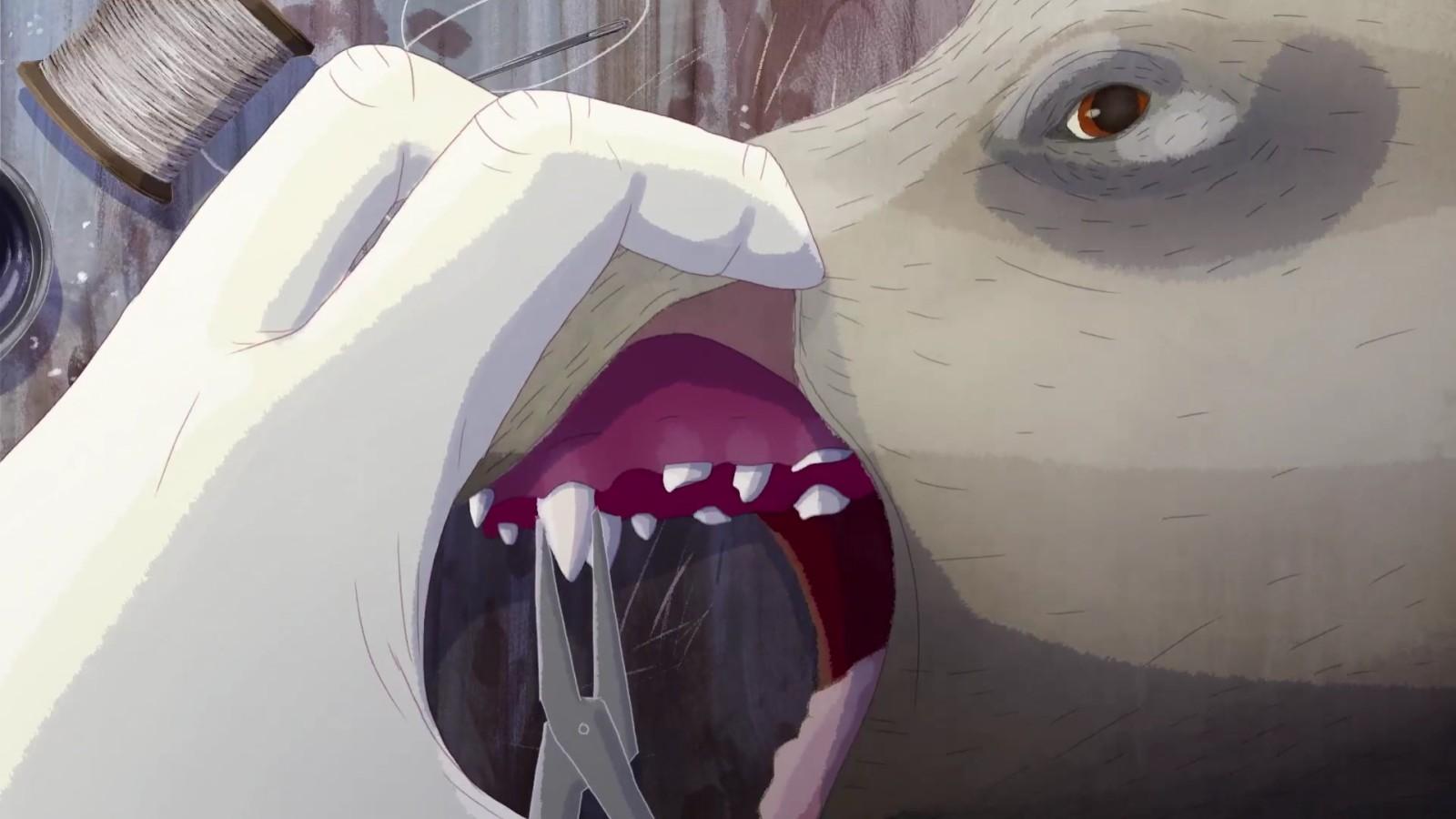 teeth-03