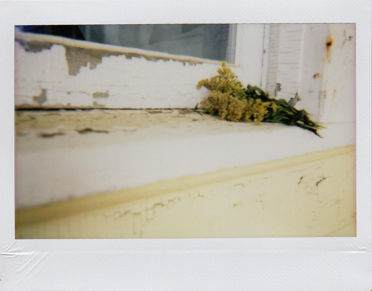 Sarah Seené_Souvenirs de brume023